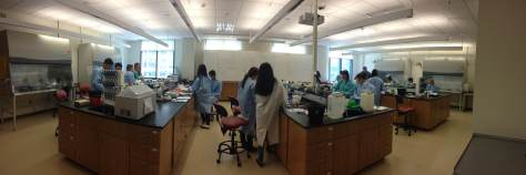 The Bio Boot Camp had students really busy and focused
