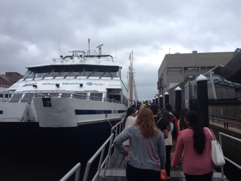 The Aurora was the vessel which took us Whale Watching