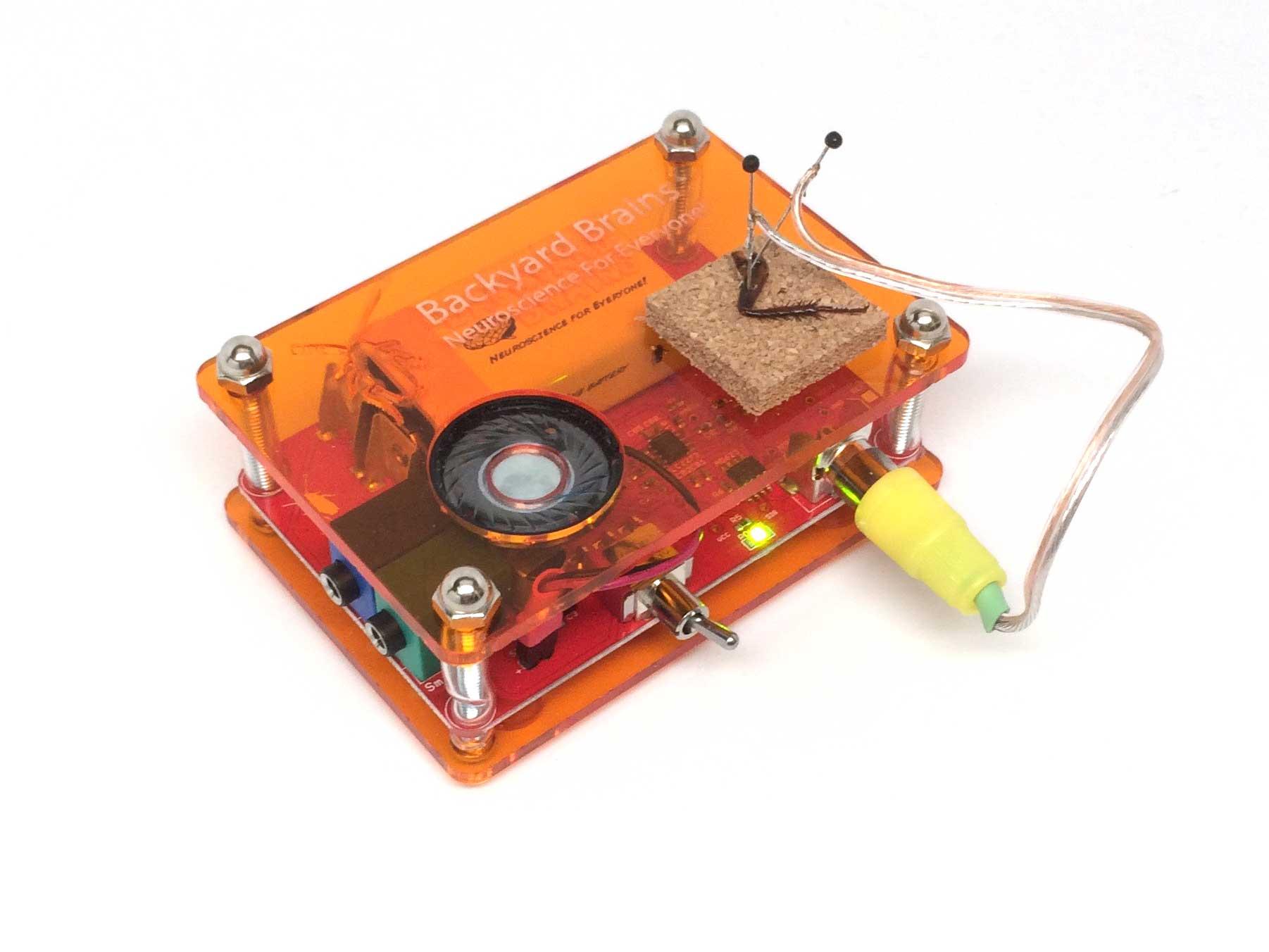 NeuronSpikerbox2015.jpg